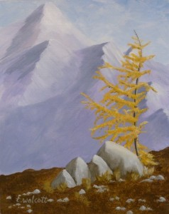 Sunshine Larch