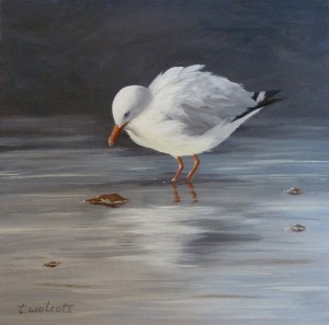 JONATHAN SEAGULL: Private Collection